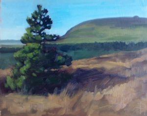 Union Wood Sligo